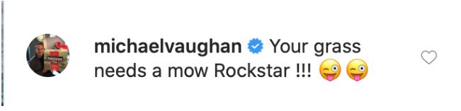 Michael Vaughan's reply to Jadeja's Video